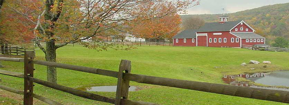 CT-Farm-Scene