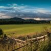 farm-field-fence-foreground